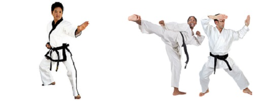 Difference between Traditional Karate and Sport Karate