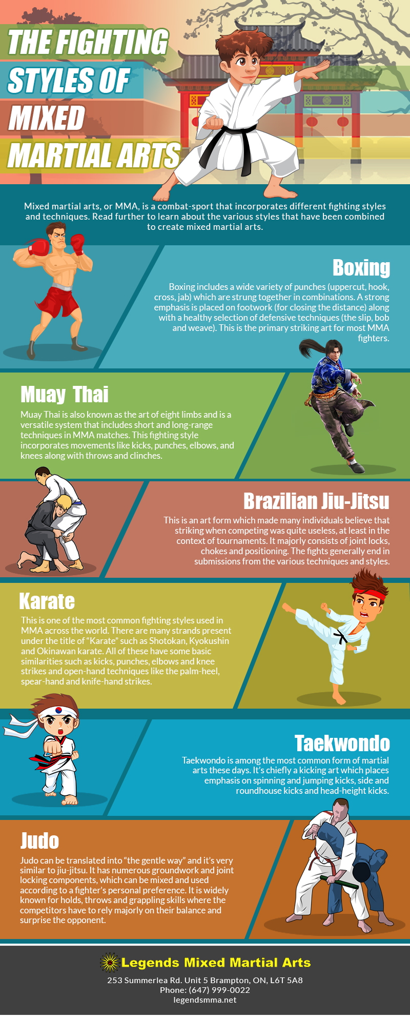 THE FIGHTING STYLES OF MIXED MARTIAL ARTS